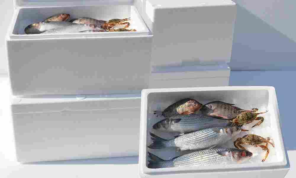 Cassette per il pesce in polistirolo da smaltire